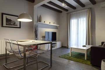 V-2bed+1bath with terrace